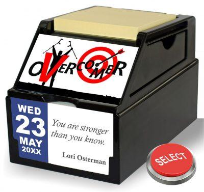 Overcomer Support Organizer